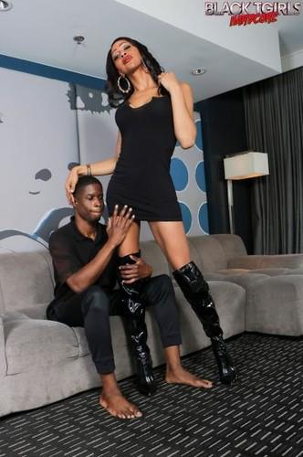 BlackTGirlsHardcore: Sparkle Tops Playboi