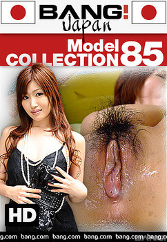 Model Collection 85 (2018)