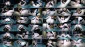 Fine Furry Friends - Audrie and Brandi