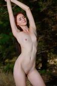 Helena B - Pine (11-08-2018) -o6qvccifnr.jpg