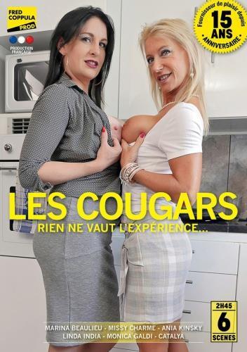 Cougars porno