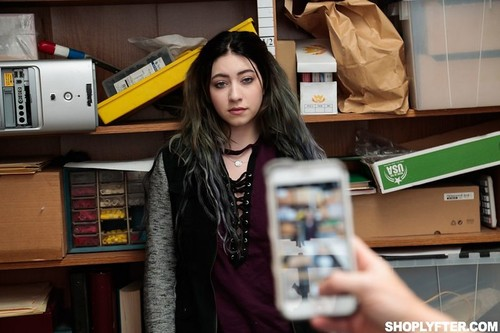 ShopLyfter May-Dec 2017 SiteRip