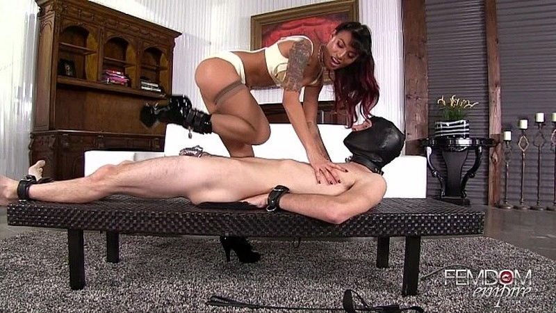 Chastity bitch suffering
