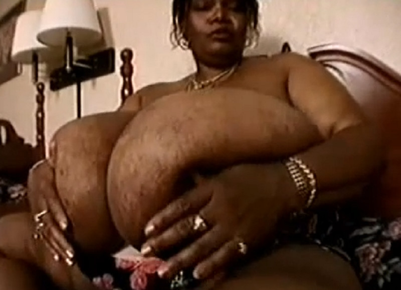 Norma Stitz World Biggest Black Tits