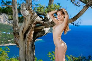 Hailey - Tree Nymph-l6sihi0nas.jpg