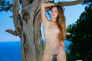 Hailey - Tree Nymph-g6sih0osr5.jpg