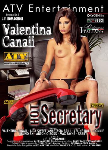 Hot Secretary (2013)