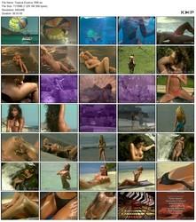 Tropical Exotica (1999)